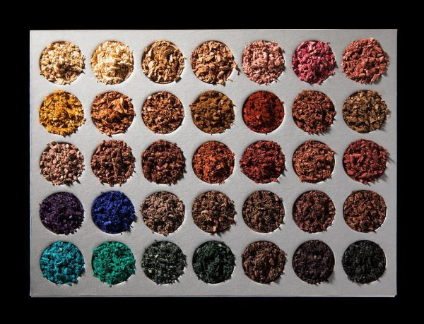 Jaclyn Hill X Morphe coleção de sombras